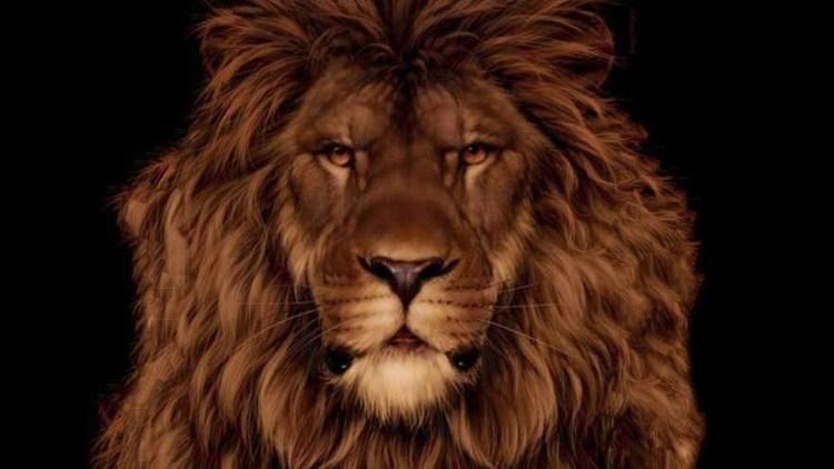 Лев или мышь? Сможете ли вы увидеть спрятанного на картине грызуна?