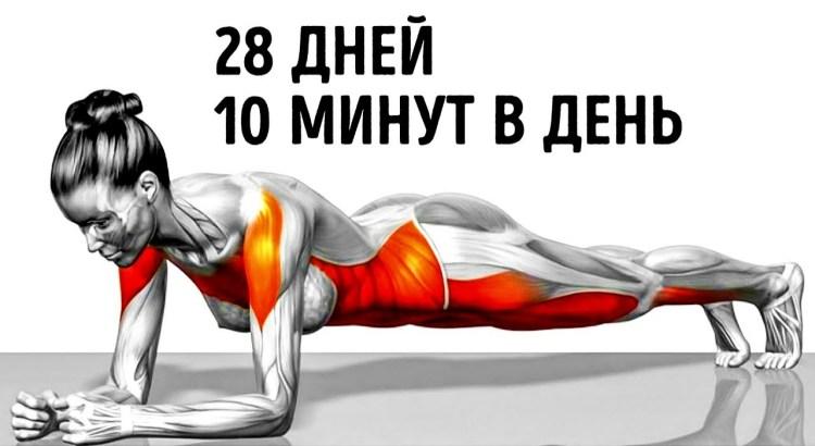 7 простых упражнений, которые помогут вам изменить свое тело в короткие сроки