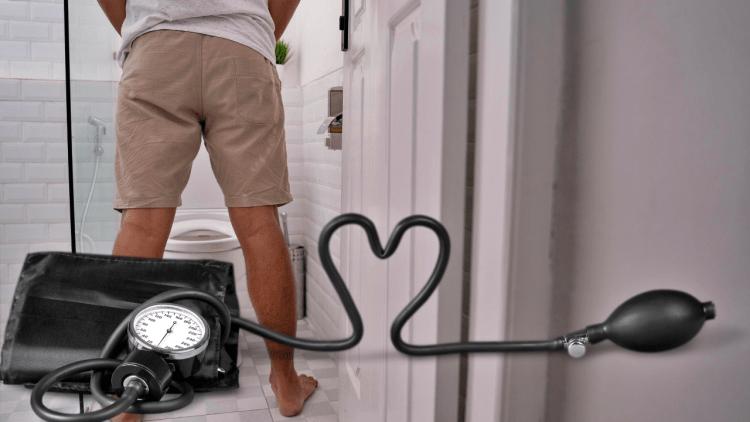 Высокое артериальное давление и мочеиспускание: как определить, что вы в зоне риска