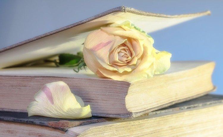 Топ-5 христианских книг о браке