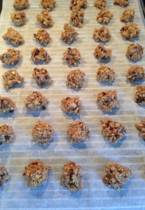 [cml_media_alt id='1369']Vegan Breakfast Cookies with Crunchy Oats, Chocolate Chips and Chia Seeds - 2[/cml_media_alt]