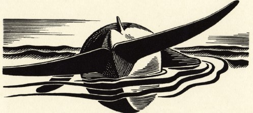 Moby Dick illustration by Rockwell Kent