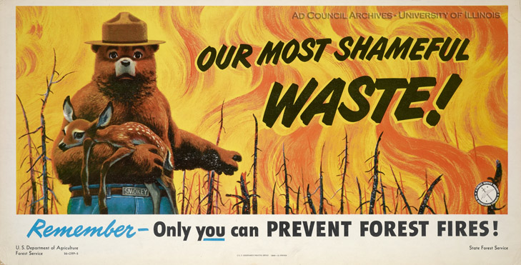 smokey bear is turning 70 years old heads up by boys life