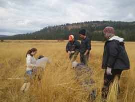 SFUHS field work