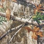 08 - Realtree EDGE™ Photo Gallery