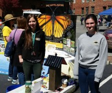 Governor's School student helpers Brenna and Taylor working the bee house table, Earth Day Staunton, April 16, 2016