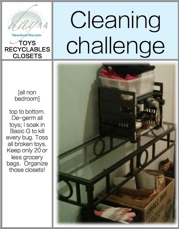 get-clean-challenge-day-14