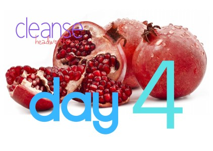 cleanse blog icon day 4