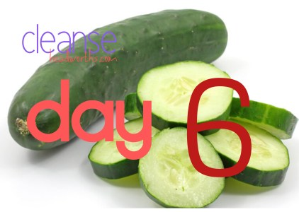 cleanse blog icon day 6
