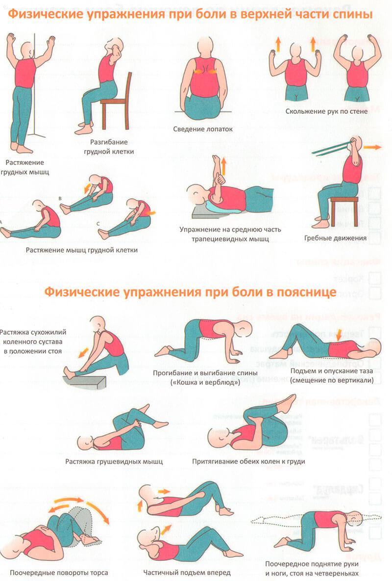 гимнастика и упражнения при дорсопатии
