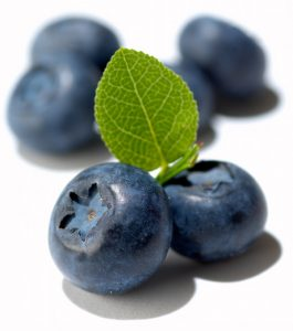 blueberries fight free radicals