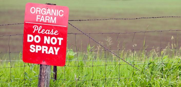 "Avoid the ""direty dozen"" most contaminated crops"