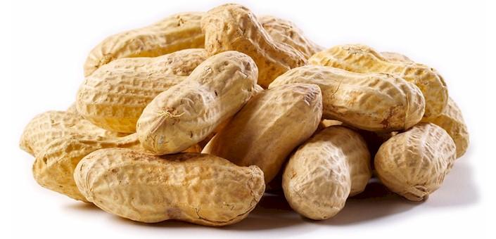 aflatoxin in peanuts