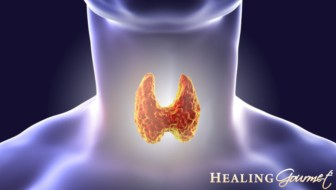keto diet and thyroid