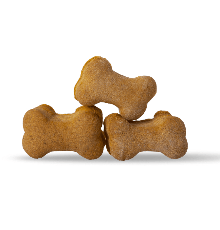 CBD infused dog bones