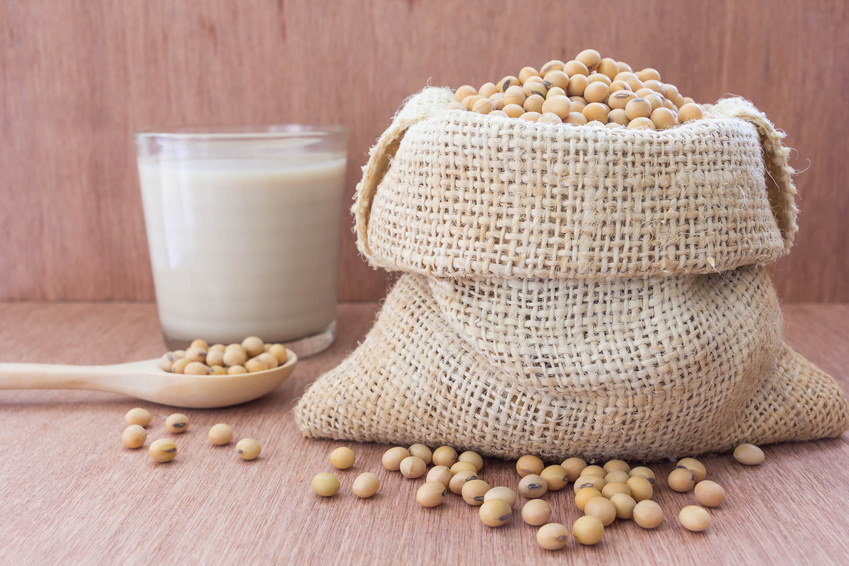 Soybean in hemp sack bag with soymilk in glass setup on wooden table.