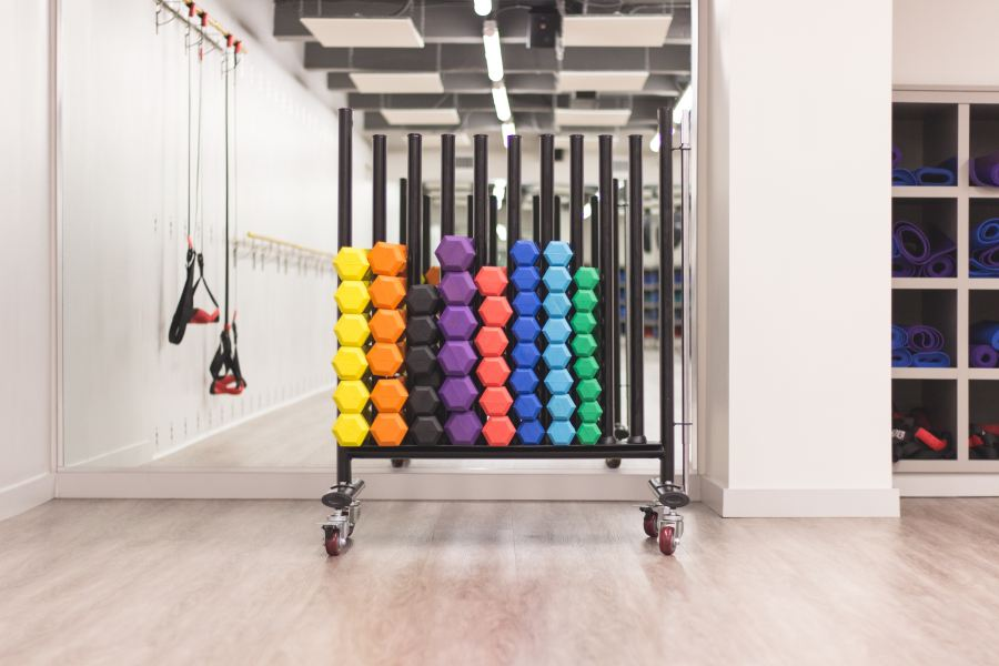 coloured barbells in a gym linking histamine to exercise