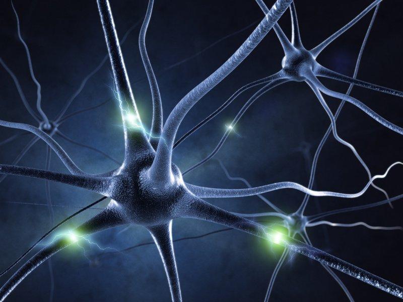 Central Nervous System (CNS) Histamine