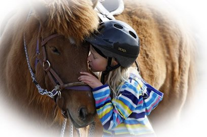 Why Horses (or dogs, or cats …)?