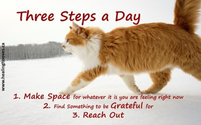 Three Steps a Day