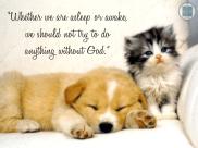 Asleep or Awake