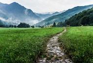 Healing Path Ministries