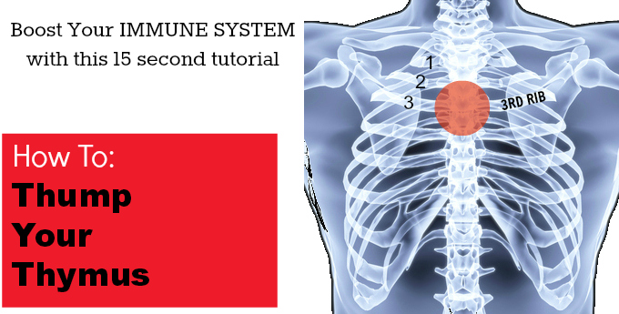 Boost Your Immune System: How To Thump Your Thymus
