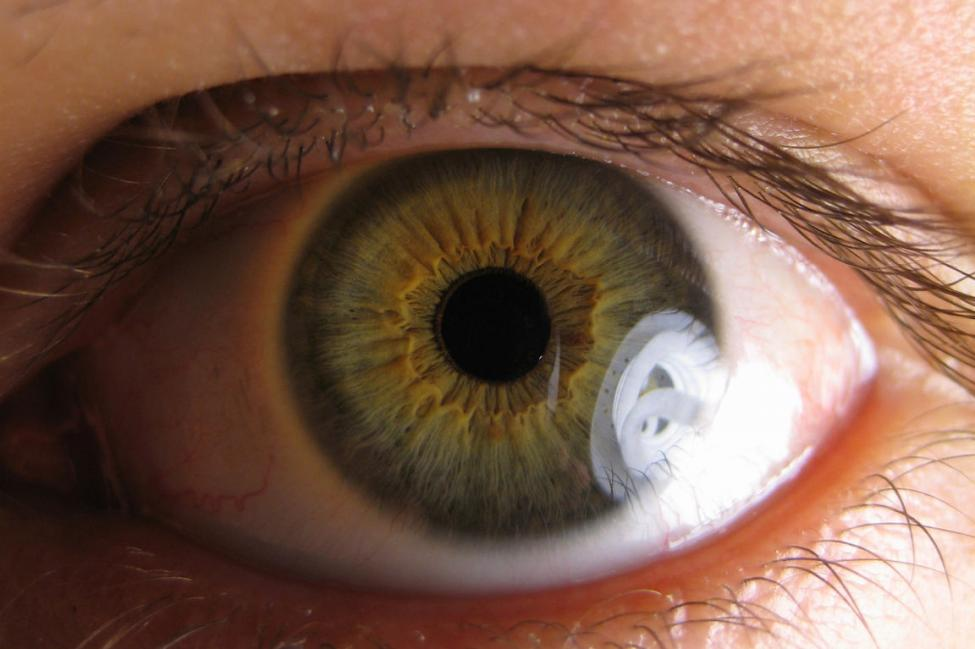 Must-Know Facts About Glaucoma   Symptoms   Treatments   Cure