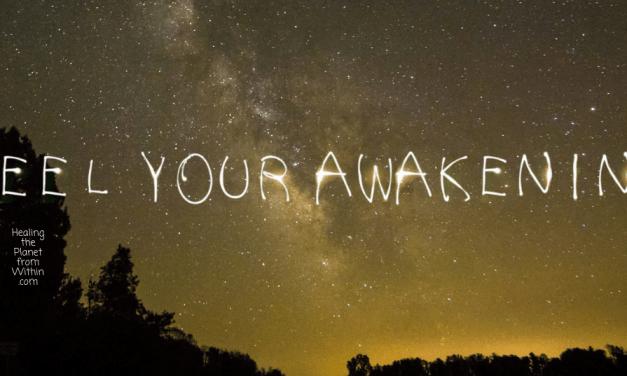 Do You Feel the Awakening?