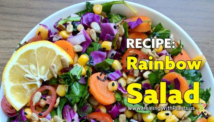 RECIPE: Rainbow Salad – 100% Whole Food Plant-Based