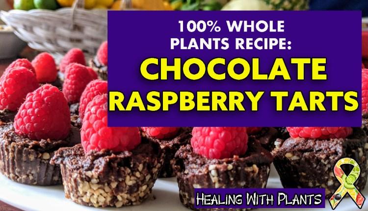 Chocolate Raspberry Tart Recipe (Vegan #WFPB)