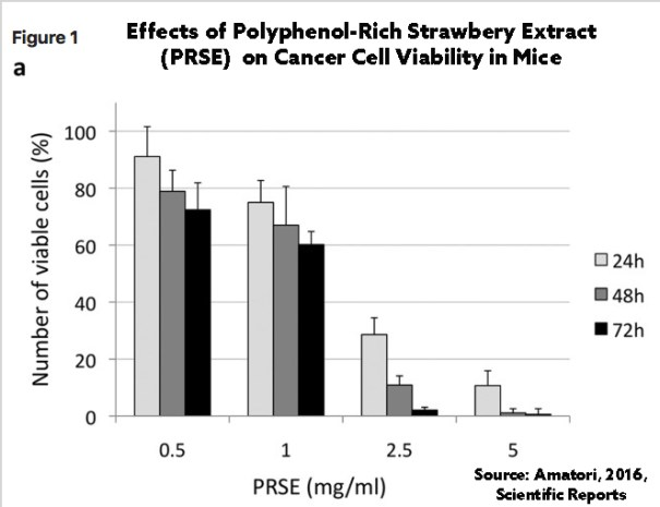 In a study with mice, strawberry extract helped halt the progression of cancer.