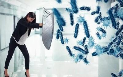 Immunsystem stärken Hausmittel – 10 Fundamente für dein Immunsystem!