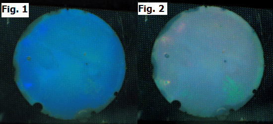 Fig. 1.  Before glucose is added, the hydrogel glucose meter is blue.  Fig. 2.  The gel changes colour from blue to green to red as the glucose level rises.  Photo courtesy of Chunjie Zhang.