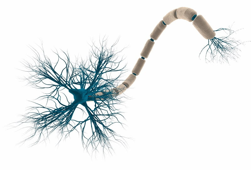 Relief for epilepsy at the scale of a single cell - neuroinnovations