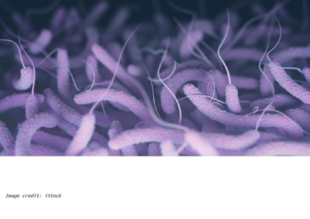 a study from researchers at the University of California - Riverside, shows differences in the gut microbiome between individuals determine resistance to cholera infection. The team states their findings suggest new personalized targets to prevent cholera infection through the modulation of the structure and function of the gut microbiome.