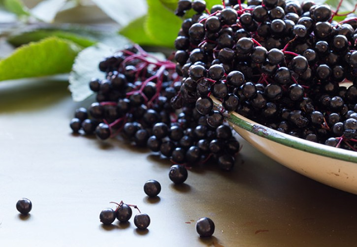 Elderberry: A Natural Way to Boost Immunity During Cold and Flu Season? –  Health Essentials from Cleveland Clinic