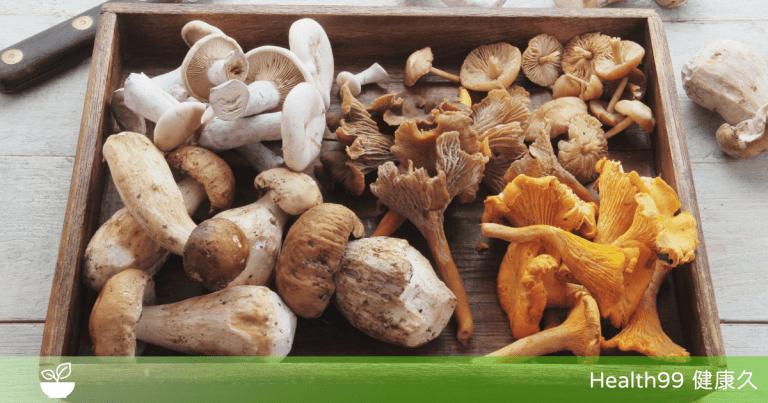 Read more about the article 菌菇被列為入《世界糧農組織》「人類最佳飲食結構」,增肌、抗癌、護心腦!