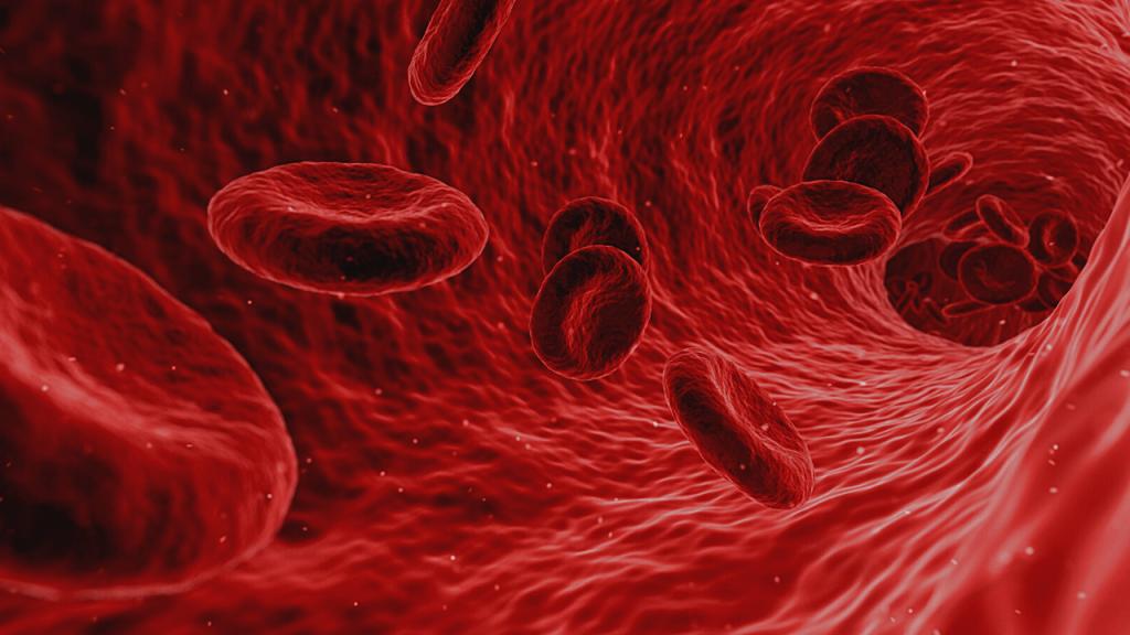 Cayenne Pepper regulates blood Pressure