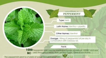 traditional-herbal-medicine