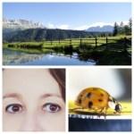 Augentraining: Mit diesen Übungen sofort erfrischter sehen