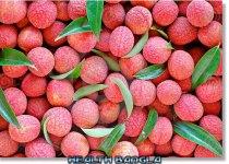 Lichi-Fruit-Death