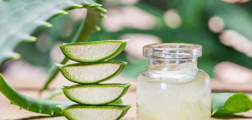 Health And Beauty Benefits Of Aloe Vera