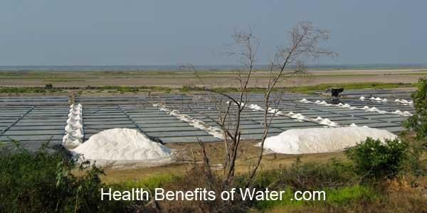 Sea Salt vs Table Salt- Sea salt harvesting in Mexico