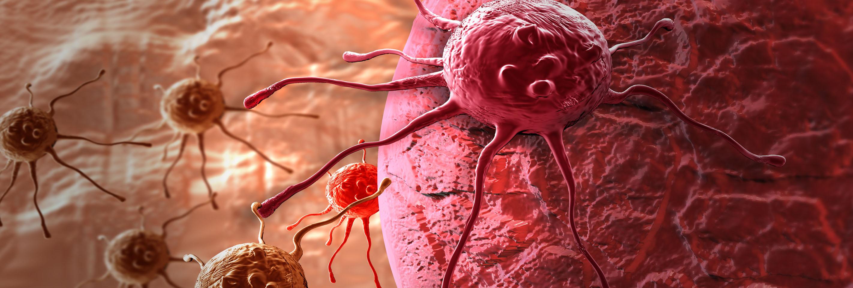 Afbeeldingsresultaat voor kanker