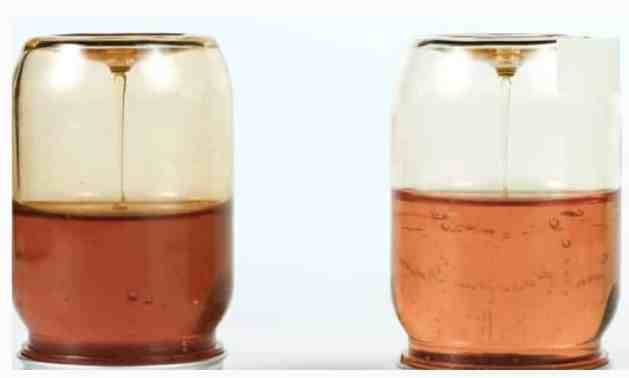 Tests To Check If Your Honey is Pure or Fake - Transparent Beaker Test