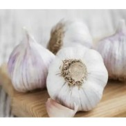 Health Benefit of Eating Garlic