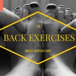 The Most Important 18 Exercises For Your Back