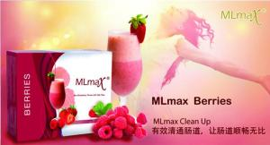 MLmax Clean Up - Berries Flavour Fibre Shake
