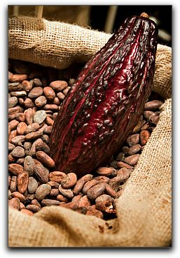 Heart Healthy Chocolate